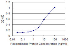 Detection limit for recombinant GST tagged C4orf43 is 0.3 ng/ml as a capture antibody.