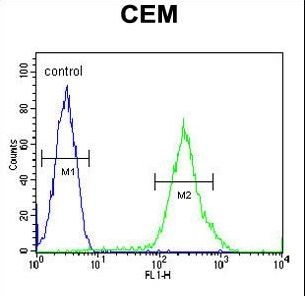 C6orf108 Antibody - RCL Antibody flow cytometry of CEM cells (right histogram) compared to a negative control cell (left histogram). FITC-conjugated goat-anti-rabbit secondary antibodies were used for the analysis.