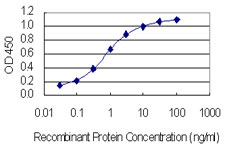Detection limit for recombinant GST tagged CACNB4 is 0.03 ng/ml as a capture antibody.