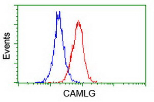 Flow cytometry of Jurkat cells, using anti-CAMLG antibody (Red), compared to a nonspecific negative control antibody (Blue).