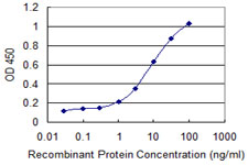 Detection limit for recombinant GST tagged CAPN3 is 0.3 ng/ml as a capture antibody.