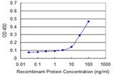 Detection limit for recombinant GST tagged CCNG1 is approximately 10 ng/ml as a capture antibody.