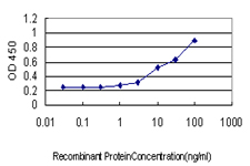 Detection limit for recombinant GST tagged CCNH is approximately 1 ng/ml as a capture antibody.