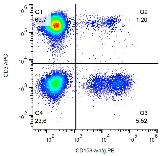CD158a + CD158g + CD158h Antibody - Surface staining of human peripheral blood with anti-CD158a/g/h (HP-MA4) PE.