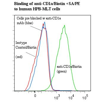 Flow cytometry of CD1A antibody This image was taken for the unconjugated form of this product. Other forms have not been tested.
