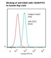 CD22 Antibody - Flow cytometry of CD22 antibody This image was taken for the unmodified form of this product. Other forms have not been tested.