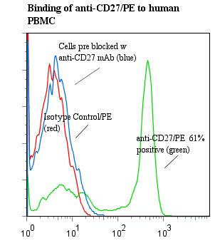 CD27 Antibody - Flow cytometry of CD27 antibody This image was taken for the unconjugated form of this product. Other forms have not been tested.
