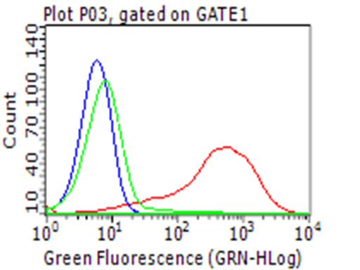 CD274 / B7-H1 / PD-L1 Antibody - Flow cytometric analysis of the stable expression of CD274 plasmid  in living 293T cells using anti-PDL1 antibody red) , compared to an isotype control. (green), and a PBS control. (blue). (1:100)