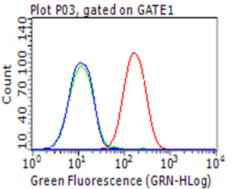 CD274 / B7-H1 / PD-L1 Antibody - Flow cytometric analysis of living HCC78 cells, using anti-CD274 antibody Red), compared to an isotype control. (green), and a PBS control. (blue). (1:100)