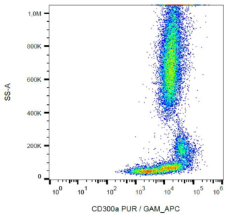 Surface staining of human peripheral blood cells with anti-CD300a (MEM-260) purified, GAM-APC.