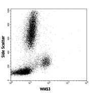 CD33 Antibody - Human peripheral blood lymphocytes, monocytes and granulocytes stained with purified WM53, followed by anti-mouse IgGs FITC