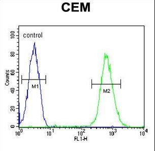 CD37 Antibody flow cytometry of CEM cells (right histogram) compared to a negative control cell (left histogram). FITC-conjugated goat-anti-rabbit secondary antibodies were used for the analysis.