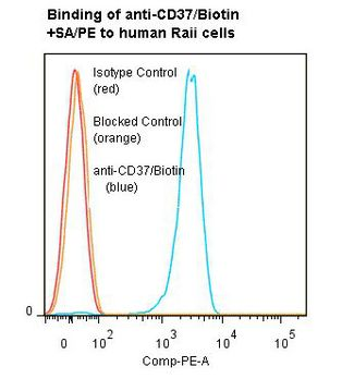 Flow cytometry of CD37 antibody This image was taken for the unconjugated form of this product. Other forms have not been tested.