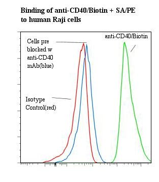 Flow cytometry of CD40 antibody This image was taken for the unconjugated form of this product. Other forms have not been tested.