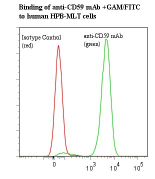 Flow cytometry of CD59 antibody This image was taken for the unmodified form of this product. Other forms have not been tested.