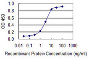 Detection limit for recombinant GST tagged CEACAM6 is 0.1 ng/ml as a capture antibody.