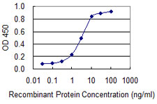CD66c / CEACAM6 Antibody - Detection limit for recombinant GST tagged CEACAM6 is 0.1 ng/ml as a capture antibody.