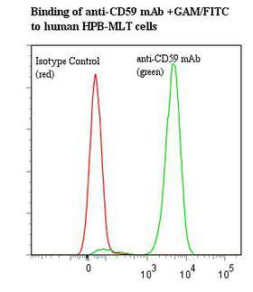 CD75 / ST6GAL1 Antibody - Flow cytometry of CD75 / ST6GAL1 antibody This image was taken for the unmodified form of this product. Other forms have not been tested.