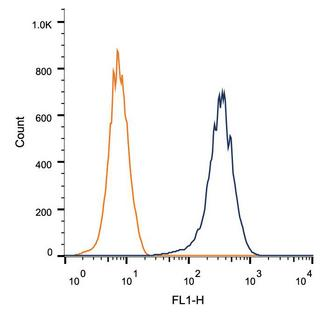 Flow Cytometry: CD81 Antibody (1D6) - Surface flow cytometric staining of 1 x 10^6 PBMC cells using CD81 antibody (dark blue). Isotype control shown in orange. An antibody concentration of 1 ug/1x10^6 cells was used.  This image was taken for the unconjugated form of this product. Other forms have not been tested.