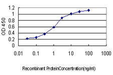 Detection limit for recombinant GST tagged CDC25A is approximately 0.03 ng/ml as a capture antibody.