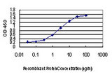 Detection limit for recombinant GST tagged CDKL1 is approximately 0.03 ng/ml as a capture antibody.