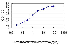 Detection limit for recombinant GST tagged CDKL4 is approximately 0.03 ng/ml as a capture antibody.