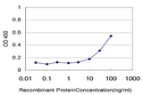 Detection limit for recombinant GST tagged CFL1 is approximately 10 ng/ml as a capture antibody.