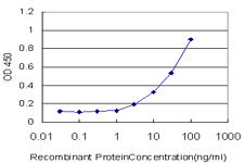 CHEK1 / CHK1 Antibody - Detection limit for recombinant GST tagged CHEK1 is approximately 1 ng/ml as a capture antibody.