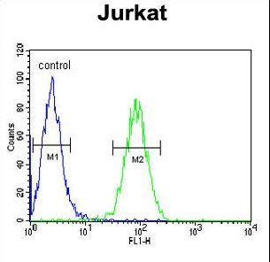 CLDN22 / Claudin 22 Antibody - CLDN22 Antibody flow cytometry of Jurkat cells (right histogram) compared to a negative control cell (left histogram). FITC-conjugated goat-anti-rabbit secondary antibodies were used for the analysis.