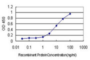 Detection limit for recombinant GST tagged CLU is approximately 0.1 ng/ml as a capture antibody.