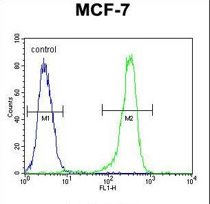 CMC2 / C16orf61 Antibody - DC13 Antibody flow cytometry of MCF-7 cells (right histogram) compared to a negative control cell (left histogram). FITC-conjugated goat-anti-rabbit secondary antibodies were used for the analysis.