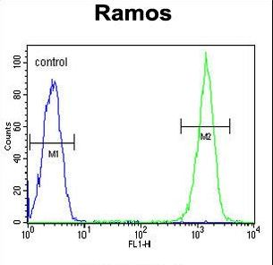 CMTM7 / CKLFSF7 Antibody - CMTM7 Antibody flow cytometry of Ramos cells (right histogram) compared to a negative control cell (left histogram). FITC-conjugated goat-anti-rabbit secondary antibodies were used for the analysis.
