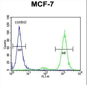 Cnpy2 / TMEM4 Antibody - CNPY2 Antibody flow cytometry of MCF-7 cells (right histogram) compared to a negative control cell (left histogram). FITC-conjugated goat-anti-rabbit secondary antibodies were used for the analysis.