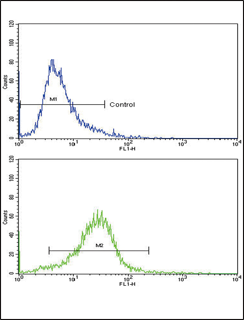 Flow cytometric of 293 cells using COL6A1 Antibody (bottom histogram) compared to a negative control cell (top histogram). FITC-conjugated goat-anti-rabbit secondary antibodies were used for the analysis.
