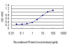 Detection limit for recombinant GST tagged C4B is approximately 0.1 ng/ml as a capture antibody.