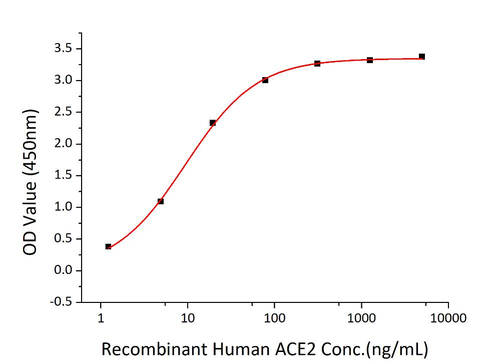 SARS-CoV-2 Spike Glycoprotein Protein - Immobilized Recombinant 2019-nCoV Spike RBD-His at 2µg/mL (100 µL/well) can bind Recombinant Human ACE2 with a linear range of 1.5-9.4 ng/mL.
