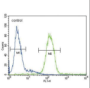 CP Antibody flow cytometry of HepG2 cells (right histogram) compared to a negative control cell (left histogram). FITC-conjugated goat-anti-rabbit secondary antibodies were used for the analysis.