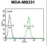 CRHR2 Antibody flow cytometry of MDA-MB231 cells (right histogram) compared to a negative control cell (left histogram). FITC-conjugated goat-anti-rabbit secondary antibodies were used for the analysis.