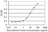 Detection limit for recombinant GST tagged CRYBA4 is 0.3 ng/ml as a capture antibody.