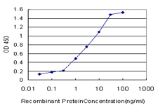 Detection limit for recombinant GST tagged CRYGD is approximately 0.03 ng/ml as a capture antibody.