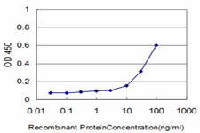 Detection limit for recombinant GST tagged CSE1L is approximately 3 ng/ml as a capture antibody.