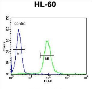 CSF2 Antibody flow cytometry of HL-60 cells (right histogram) compared to a negative control cell (left histogram). FITC-conjugated goat-anti-rabbit secondary antibodies were used for the analysis.