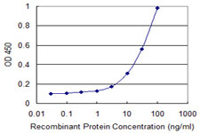 Detection limit for recombinant GST tagged CXCL1 is 1 ng/ml as a capture antibody.
