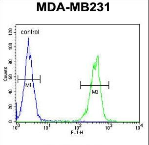 CYP2A7 Antibody - CYP2A7 Antibody flow cytometry of MDA-MB231 cells (right histogram) compared to a negative control cell (left histogram). FITC-conjugated goat-anti-rabbit secondary antibodies were used for the analysis.