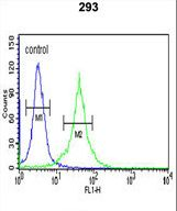 DCD / Dermcidin Antibody - DCD Antibody flow cytometry of 293 cells (right histogram) compared to a negative control cell (left histogram). FITC-conjugated goat-anti-rabbit secondary antibodies were used for the analysis.