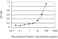 DCTN1 / Dynactin 1 Antibody - Detection limit for recombinant GST tagged DCTN1 is 0.1 ng/ml as a capture antibody.