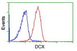 Flow cytometry of Jurkat cells, using anti-DCX antibody (Red), compared to a nonspecific negative control antibody (Blue).