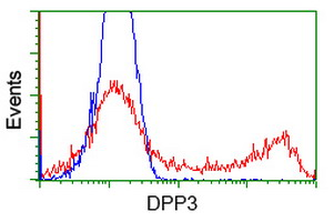 HEK293T cells transfected with either overexpress plasmid (Red) or empty vector control plasmid (Blue) were immunostained by anti-DPP3 antibody, and then analyzed by flow cytometry.