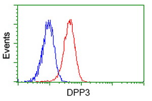 Flow cytometry of Jurkat cells, using anti-DPP3 antibody (Red), compared to a nonspecific negative control antibody (Blue).