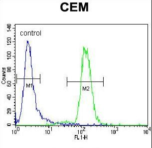 DISC1 Antibody - DISC1 Antibody flow cytometry of CEM cells (right histogram) compared to a negative control cell (left histogram). FITC-conjugated goat-anti-rabbit secondary antibodies were used for the analysis.